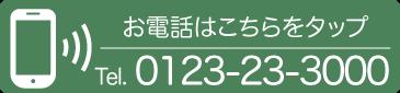 0123-23-3000